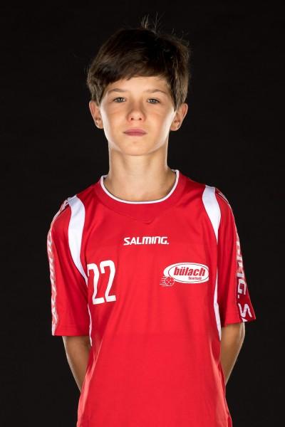 Alain Fitzli
