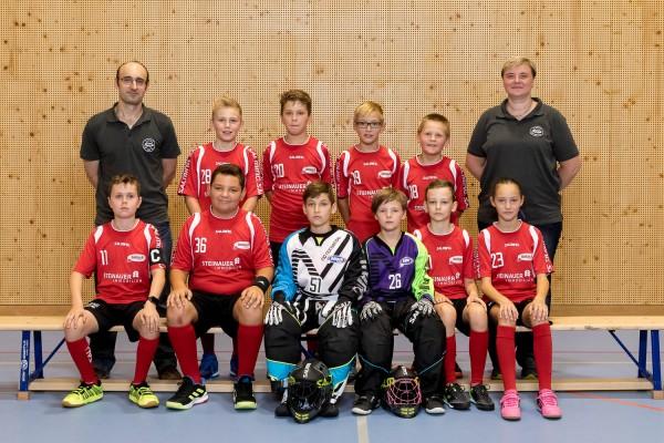 Junioren D rot - Saison 2019/2020